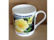 Ashwood Anniversary Bone China Mug