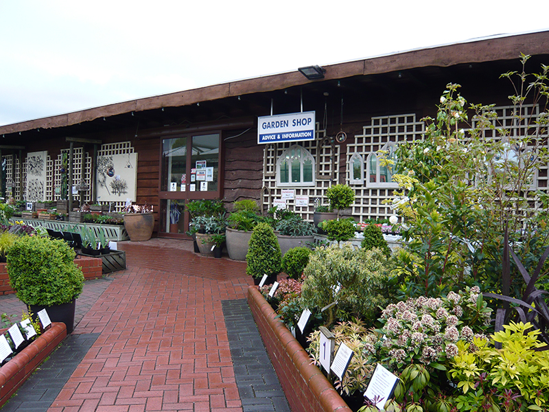 Shopping Ashwood Nurseries